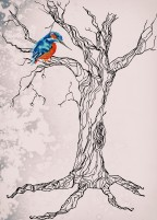 Kingfisher on tree with texture2